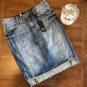 🍂 Fall Kut from the Kloth Denim Skirt